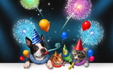 New Year Pet Celebration