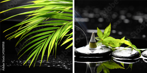 Poster Spa Spa still with green palm ,ivy and incense