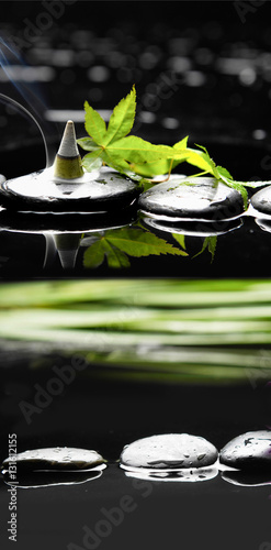 Poster Spa Spa still with green leaf ,ivy and incense