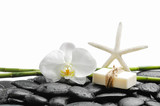 White orchid with black stones ,grove,soap with starfish on wet background