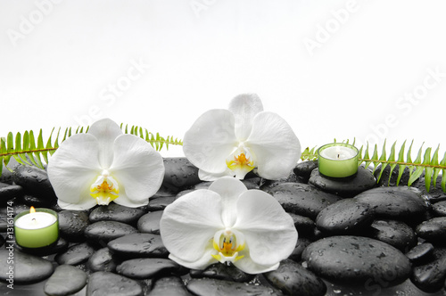 Poster Spa White orchid and candle and fern on black stones