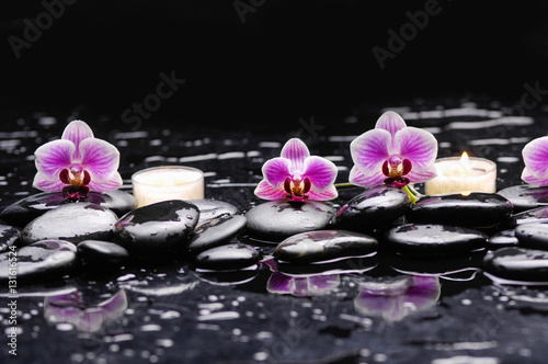 Poster Spa Pink orchid and white candle on black stones