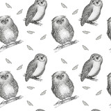 Hand drawn isolated  black white seamless pattern owl fly bird.