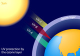 UV protection by the ozone layer