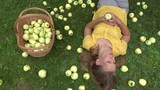 young woman lie on grass in orchard and eat juicy apple. 4K