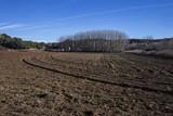 Campo en invierno en Castilla la Mancha