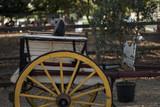Portuguese horse cart