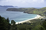 Coromandel Beaches, New Zealand - 131774303