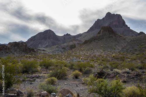 Poster Desert Landscape Arizona