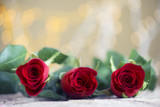 Red roses with beautiful background for Valentines day