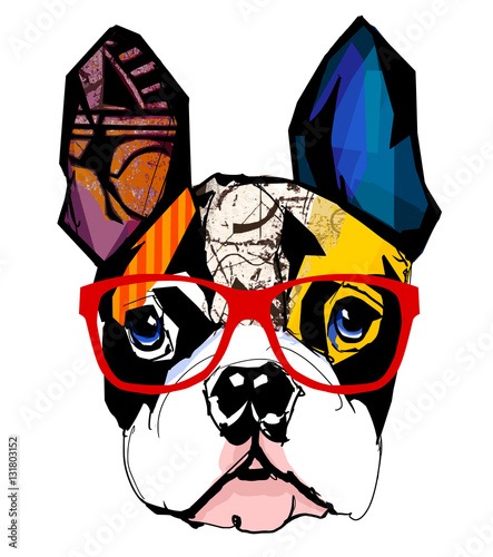 Aluminium Art Studio Portrait of french bulldog wearing sunglasses