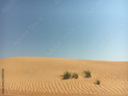 Poster Wahiba Sands, Oman