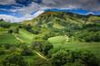 Quadro Fiji - Viti Levu - Oceania