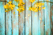 Yellow flowers on vintage wooden background, border design. vintage color tone - concept flower of spring or summer background