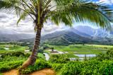 Princeville, Hawaii - 132042962