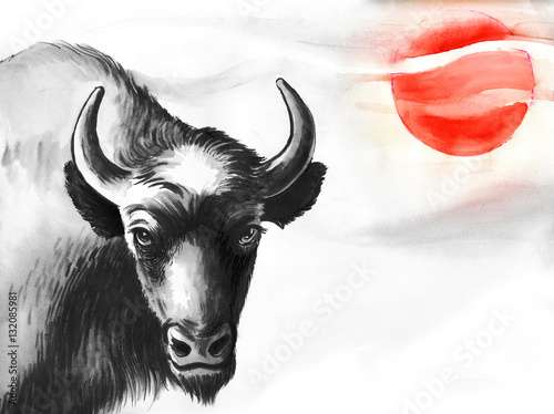Bison and sun - 132085981