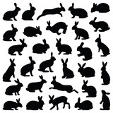 Rabbit and Hare collection - silhouette illustration