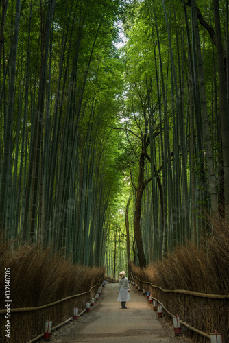 Woman in a bamboo forest, Japan Poster
