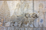 Relief in Persepolis  - ceremonial capital of the Achaemenid Empire in Iran