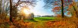 Idyllische Landschaft im Herbst mit Wald und Sonne