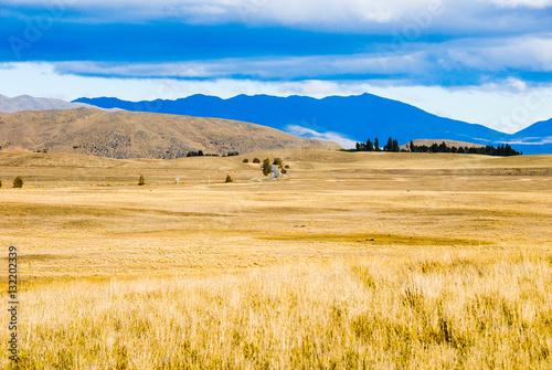 Poster 秋のニュージーランド南島の牧草地(ニュージーランド)
