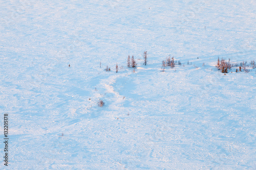 Poster Short winter day of frozen tundra, top view