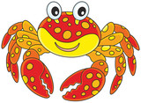 Red spotted crab