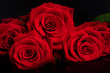 Valentines Day present red roses bouquet