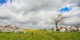 Panorama invernale sullaltopiano ibleo