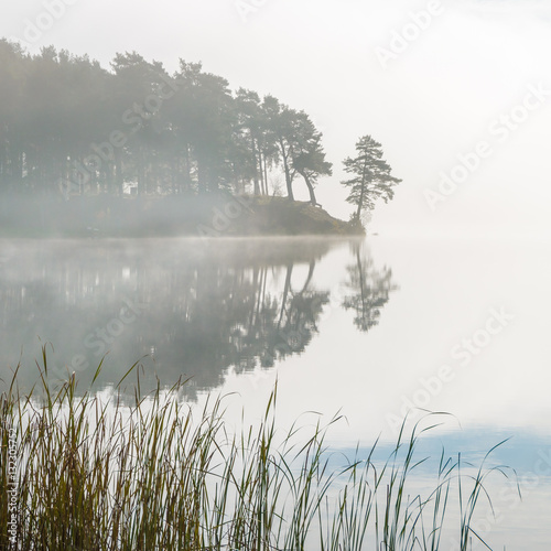 morning mist on the lake - 132305752