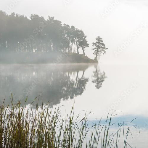 morning mist on the lake - 132305752