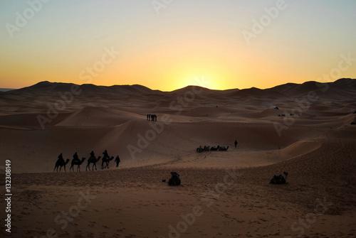 Poster Alba con i dromedari nel deserto del Marocco