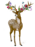 beautiful deer with floral wreath