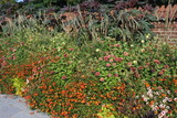 Blumenschmuck vor dem Roskilde Palais