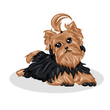 cartoon cute vector yorkshire terrier at the white background - 132370968