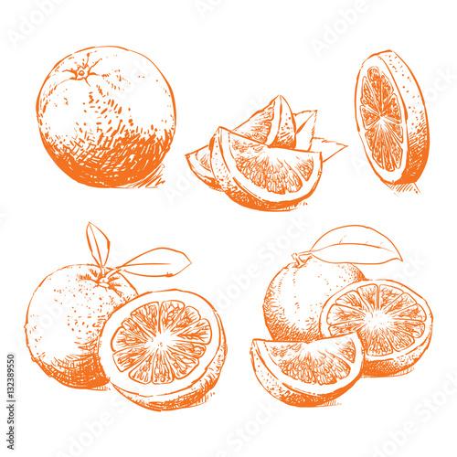 Orange Isolated on white background. Juice vector illustration, Clip art