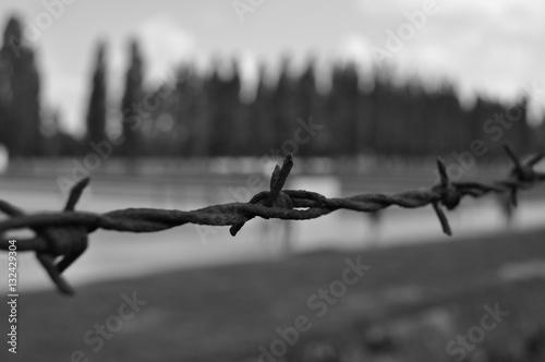 Poster Campo Concentramento Dachau - Monaco