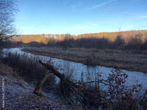 Landschaft am Fluss mit einem Baum, der von einem Biber gefällt wurde Poster