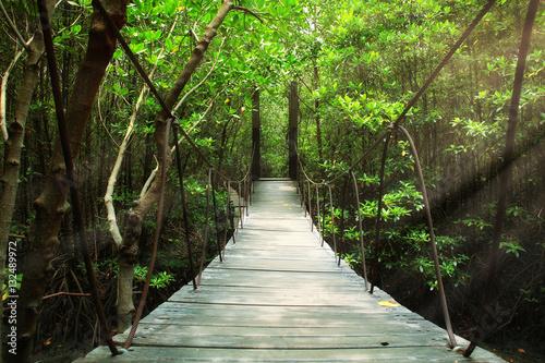 Suspension bridge in the forest - 132489972