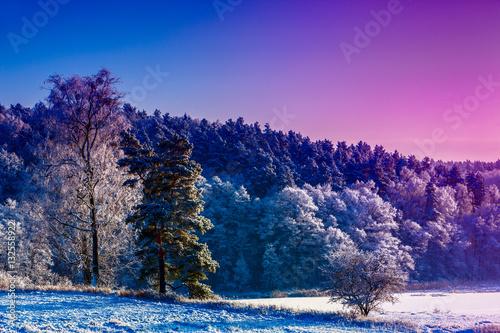 Poster zimowy świt nad jeziorem Kielarskim