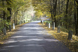 colored autumn and an old road with milestones