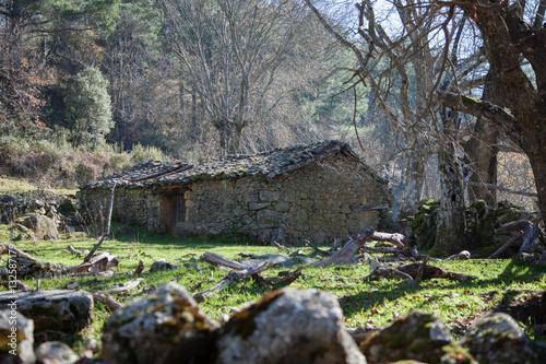 Casa de piedra Canvas