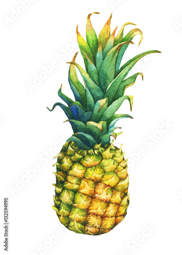 Ripe pineapple with green leaves. Watercolor illustration on a white background. - 132594995