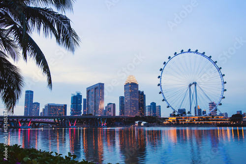 Poster Singapore skyline by night, beautiful cityscape with ferris wheel and reflection
