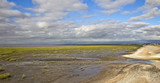 Saltmarsh at low tide, Southport, Merseyside, Lancashire, England, UK.