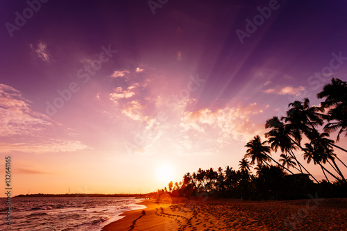 Poster Zanzibar Beautiful landscape tropical beach.