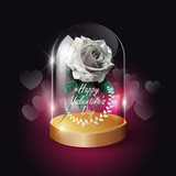 Transparent glass dome and white rose lowpoly style on heart bokeh background with Valentine