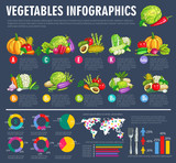 Vegetable infographics with graphs and veggies