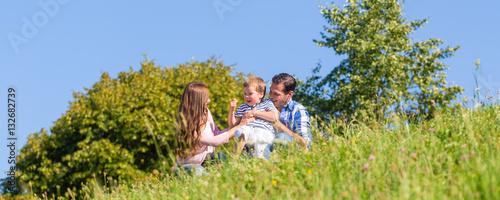 Familie sitzt auf der Wiese und das Kind winkt - 132682739