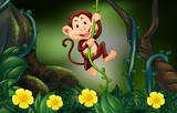 Monkey on the vine in the forest